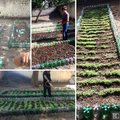 Projeto horta na escola
