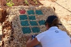 Pra cego ver: uma pessoa agachada fazendo uma montagem da logomarca do IFTO com matéria prima natural. Fim da Descrição