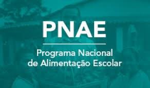 Pra cego ver: Agricultor familiar ao fundo e texto: PNAE, Programa Nacional de Alimentação Escolar. Fim da descrição.