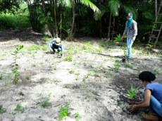 Estudantes realizam reflorestameto previsto no cronograma do projeto